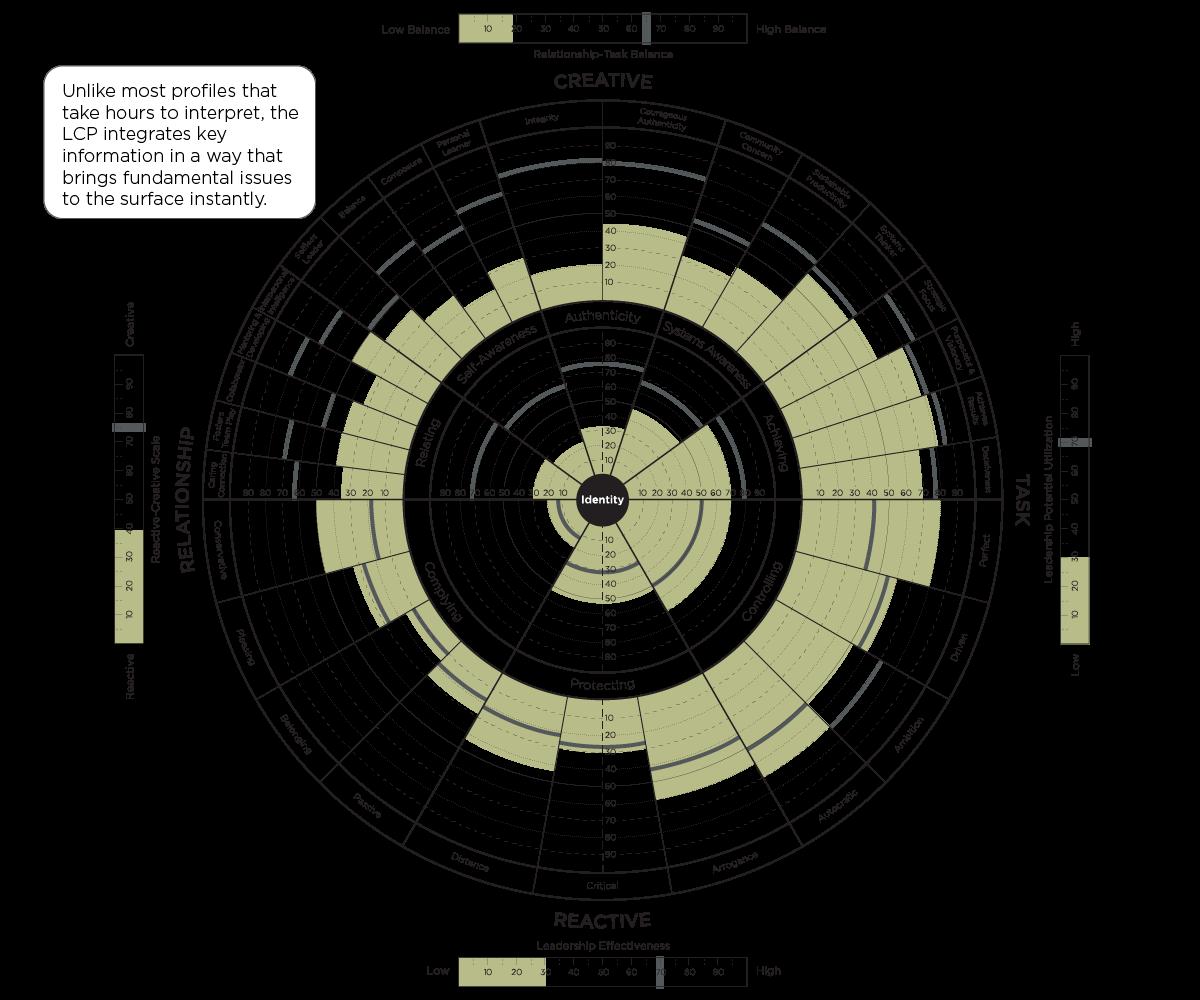 The Leadership Circle Tool